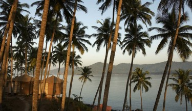 Beach huts and palm trees at sunset, Palolem Beach, Goa, India.