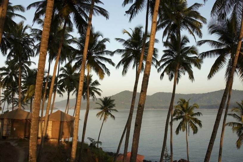 Beach huts and palm trees at sunset, Palolem Beach, Goa, India.