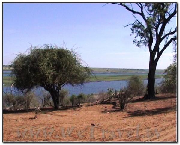 Botswana Chobe 063