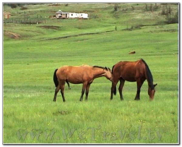 Republic of South Africa Drakensberg 008