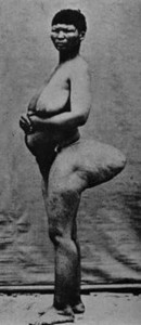 big ass & big boobs_02