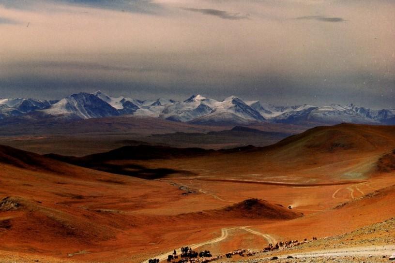 mongoliya 102