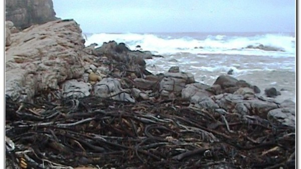 Republic of South Africa Cape of Good Hope 012