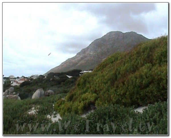 Republic of South Africa Cape of Good Hope 015 (2)