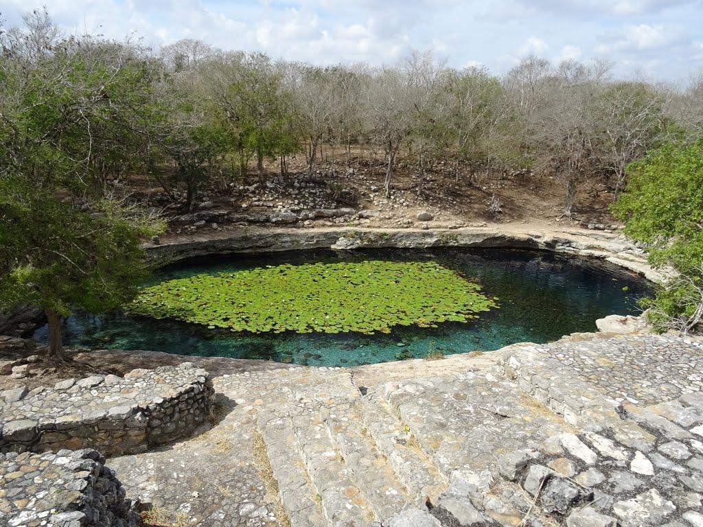 Cenote Xlakah, Dzibilchaltun 2