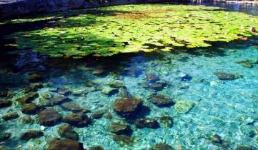 Cenote Xlakah, Dzibilchaltun 4