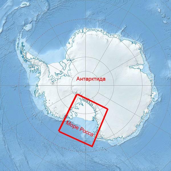 Ross Sea 6