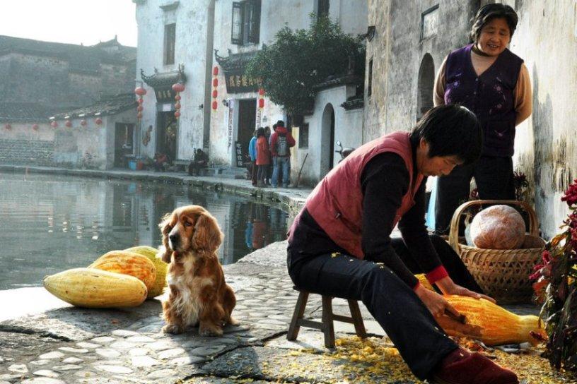 China www.WeTravel.tv