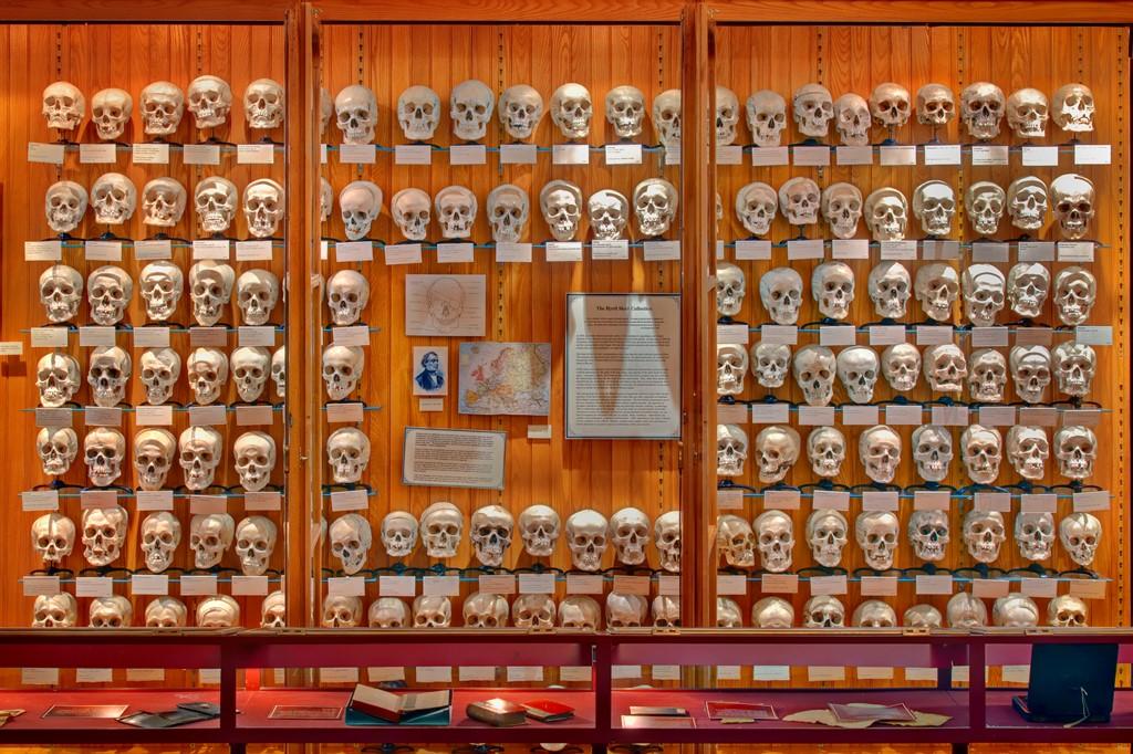 Музей медицинской истории Мюттера  (Mutter Museum),  Филадельфия, штат Пенсильвания, США