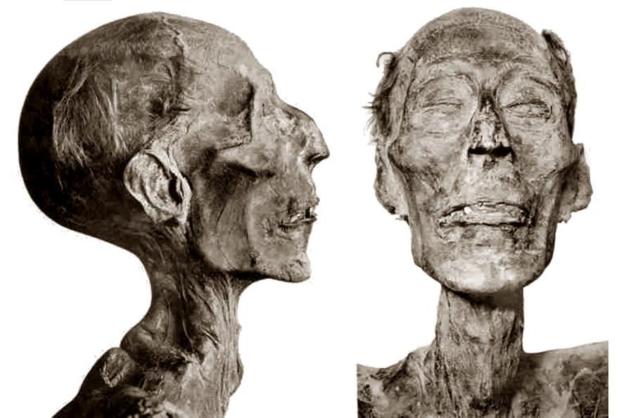Ramesses II 4