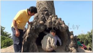 Buddha Park, Wat Xiengkhuan, Vientiane, Laos 023