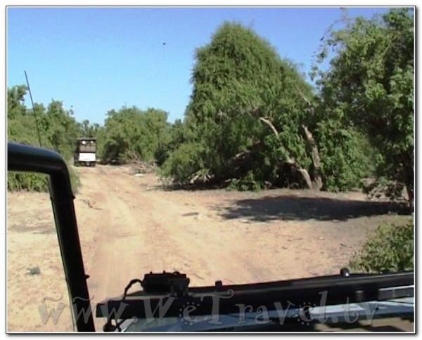 Botswana Chobe 051