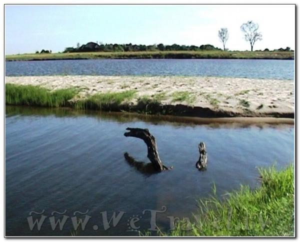 Botswana Chobe 052