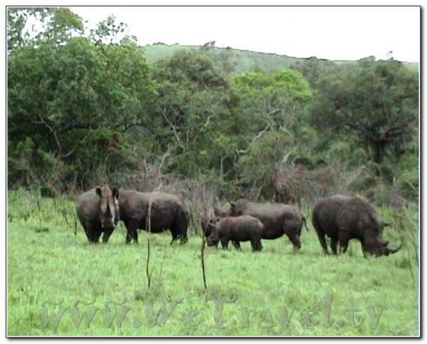 Republic of South Africa Hlu Hluwe 005