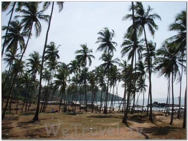 India Goa 013
