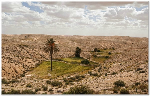 Tunisia 023