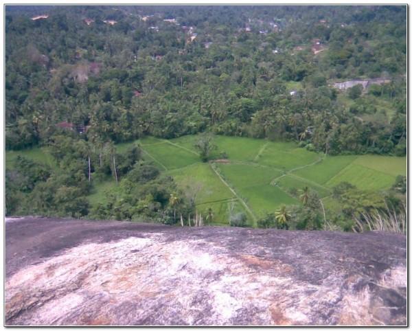 Sri Lanka. Dambadeniya 002