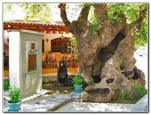 Fodele Crete 03