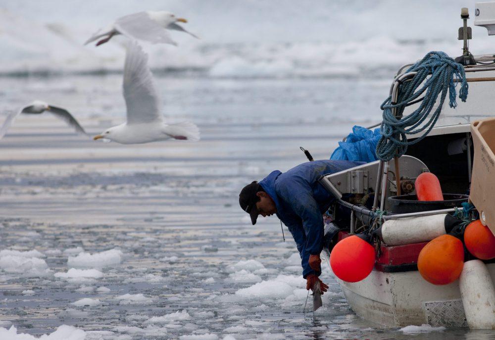 2017.01.16 WT - 01. Greenland 1